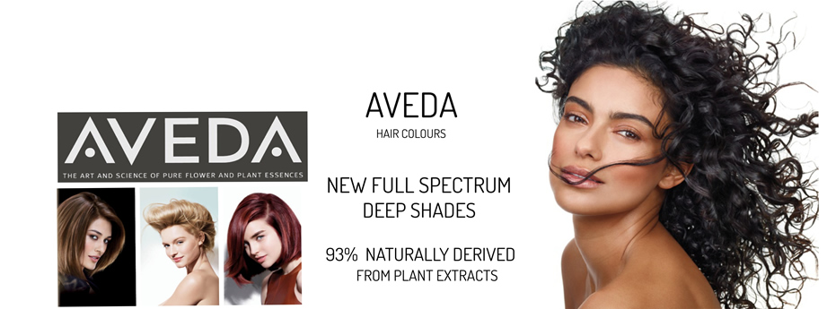 Aveda Therapy Colour and Hair Spa Service
